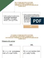 145610108-SAC-y-SRL-ppt.ppt