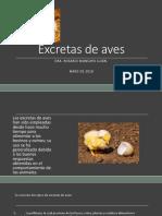 Excretas de aves.1.pptx