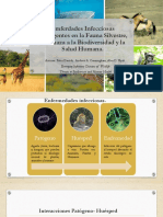 Emerging Infectious Diseases of Wildlife