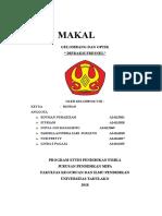 MAKALAH GELOMBANG DAN OPTIK_KELOMPOK 8.docx