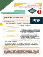 GUÍA ACTIVIDAD DE CLASE N° 3. FUERZAS CONCURRENTES 2019