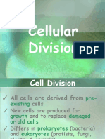 cellcyclecelldivision-110213145759-phpapp02.pdf