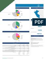 Cancer en Peru 2018.en.es