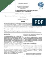 CROMATOGRAFIA_AISLAMIENTO_PURIFICACION_E.docx