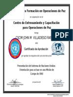 Presentacion Del Sistema de Naciones Unidas Orientacion Para Actuar en Una Mision de Campo de Onu Certificate (2)