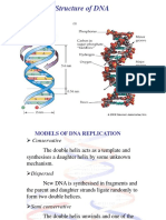 DNA Replicaiton 10012014