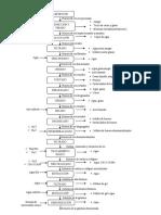 diagrama de flujo de gelatina