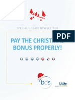 Special Update Newsletter Christmas Bonus