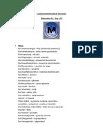 cuvinte asistenti (1).docx