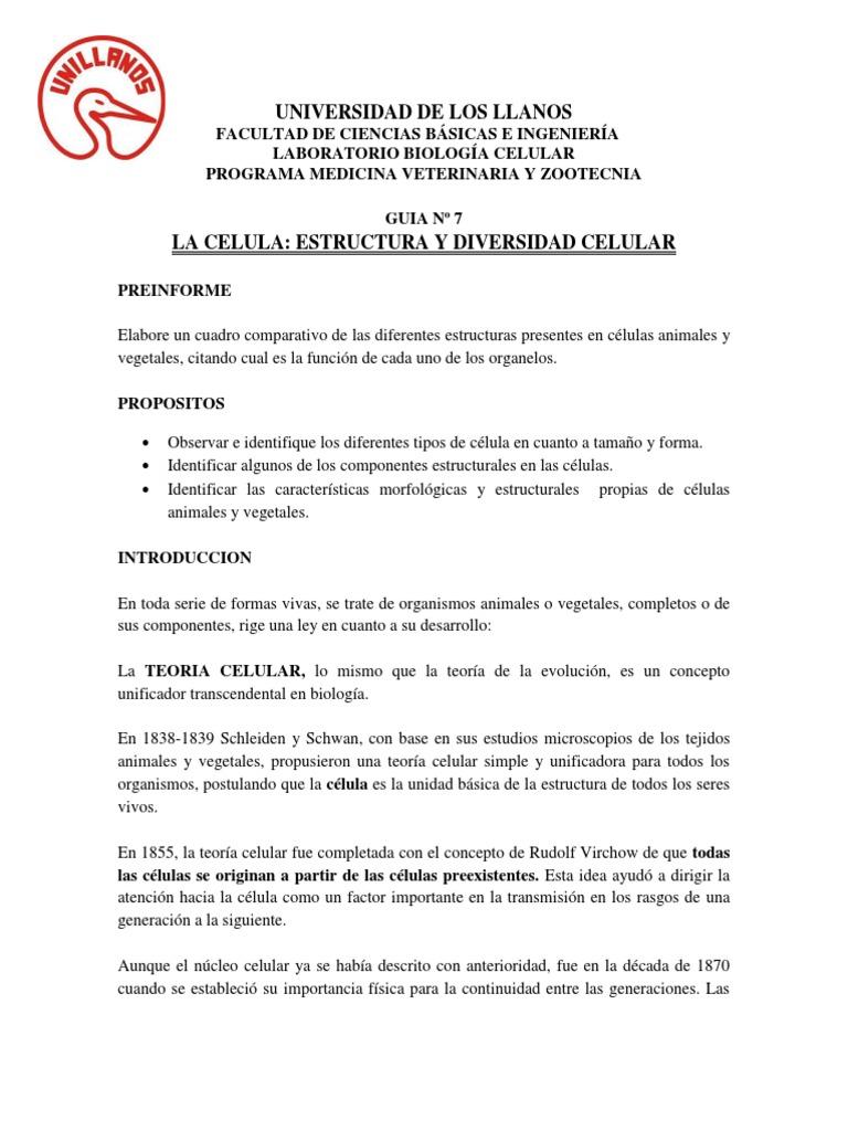 Guia 7 Veterinaria Copia Docx Cell Biology Leaf