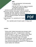 Kuliah Anatomi 1