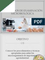 2 Metodos de Examinacion Microbiologica de Los Alimentos