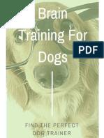 Dog Training Advice & Home Brain Training Secret