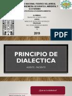 principio de la dialectica