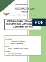 Diseño y Morfologia de La Sub Cuenca Neshuya_final