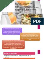2.1. La Fitoterapia en Enfermedades Digestivas-Intestino Grueso, Colonoterapia-funciones, Indicaciones y Contraindicaciones Cáncer