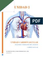 Unidad 3, Aparato Cardiovascular Pag 14