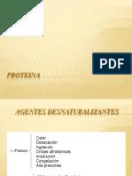 Proteina Prop Funcional