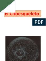 Citoesqueleto_ESMH-2019