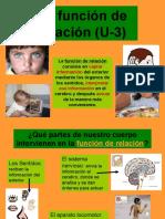 funcionrelacion-101122111142-phpapp02