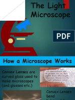 partsofthemicroscopeandtheirfunctions-130824115451-phpapp02