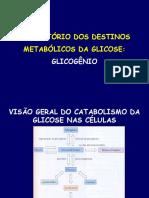 aula glicogenio2008