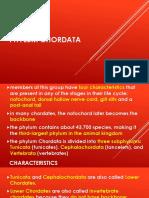 PPT Chordata