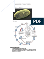 Classification of Human Parasites