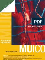 Cuaderno Didactico Bifurcaciones Dario Urzay
