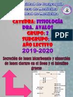 Secreción de Iones Bicarbonato y Absorción de Iones