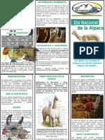 1. Dia Nacional de Alpaca