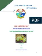 proyecto PROPIEDADES DEL MATICO