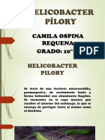 Helico b Acter