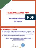 5. Ac. Nucleicos