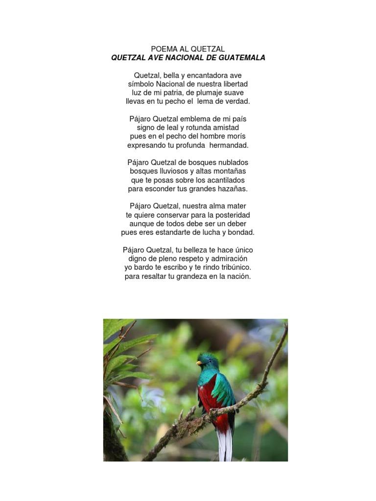 Poemas Del Escudo Nacional De Guatemala Cortos