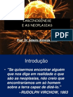 As Neoplasias