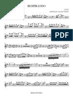 respirando Flute.pdf