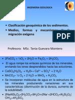 12. Clasif Geoquímica Sedimentos y Barreras Geoquimicas Exógenas
