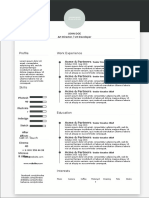 Creative Profile resume template