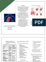 Enfermedad Pulmonar Obstructiva Crónica Folleto