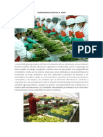 AGROEXPORTACION EN EL PERÚ.docx