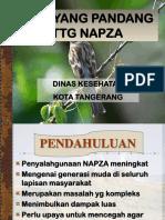 304750863-Bahan-Penyuluhan-Napza-Di-Smp.ppt