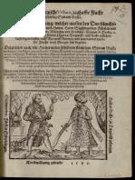 Bathory Zsigmond Havasalfoldi hadjarata 1595 -Leonhard Heussler - Newe Siebenbürgische Victoria 1595