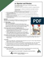 KneeSprainsStrains.pdf