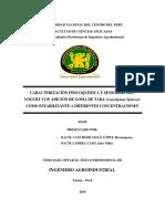 Cancho Huaman - Ladera Caso