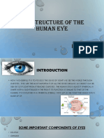 The structure of the human eye.pptx