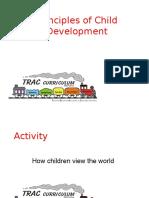 Section 4 - Principles of Child Development.pptx
