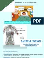 1 Sistema Inmune