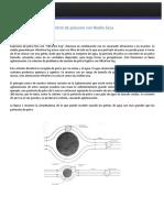 Catalogo Niebla Seca Industry System