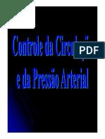 Controle Circulacao PA